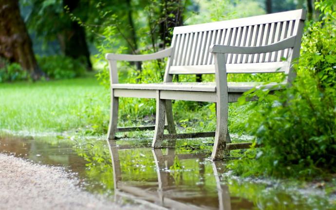 Скамейка у водоема
