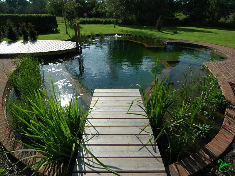 Обустройство водных зон в саду