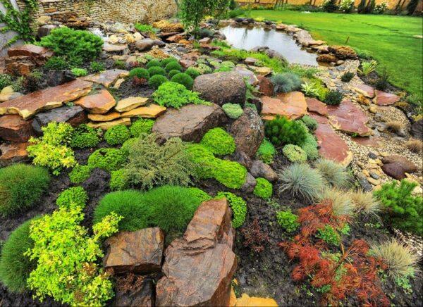 Каменистые сады Альпийская горка