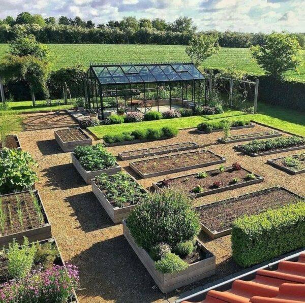 Современный огород