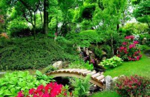 Как сделать красивый дизайн сада