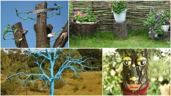 Старые деревья для оформления дачи